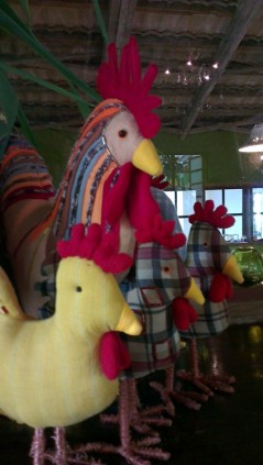 More Chickens at Marcia Adams